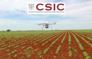 El CSIC innova en la detección temprana de malas hierbas mediante drones