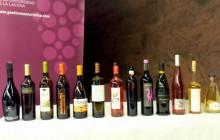 Cata de vinos de Lanzarote en la Universidad de La Laguna