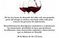 Taller de vinos maceración carbónica y tintos jóvenes. Casa del Vino Tenerife