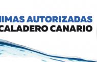 Cartel con tallas mínimas de capturas autorizadas de pesca, editado por el Cabildo de Tenerife