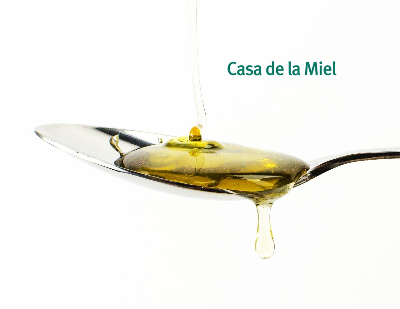 Curso de Iniciación al conocimiento y a la cata de Mieles (nivel I). Casa de La Miel. Tenerife