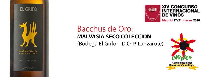elgrifo_malvasia_seco_coleccion