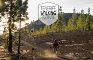 Tenerife Walking Festival y los vinos de la D.O. Valle de La Orotava