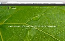 Una base de datos con 135 variedades de vid de Canarias