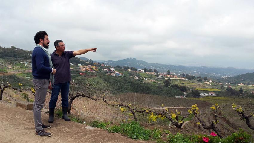 Visita a los viñedos de Bodegas Frontón de Oro (Gran Canaria)