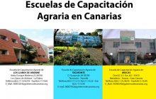 El Gobierno de Canarias incrementa los descuentos en el precio de las residencias de estudiantes de las Escuelas de Capacitación Agraria