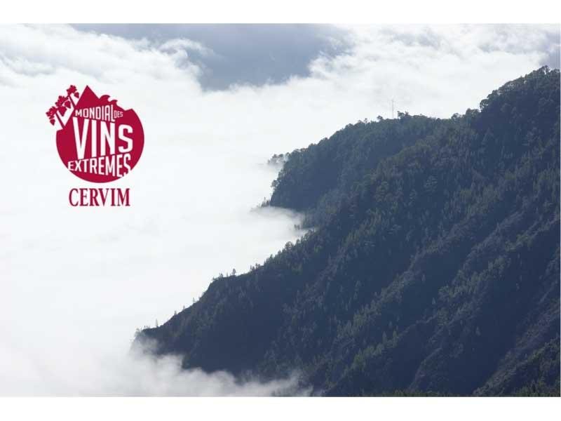 """""""Mondial de Vins Extremes 2016"""" CERVIM. Vinos canarios galardonados"""