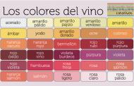 El color en el vino.