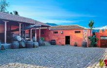 Degustación de Vinos de Tenerife del 16 al 31 de enero de 2017. Casa del Vino Tenerife