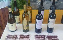 """I Concurso Regional de Vinos Ecológicos """"Garafía Lo Natural"""""""