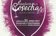 La DOP Valle de La Orotava presenta la Cosecha 2016