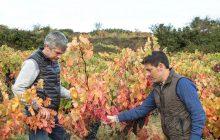 El Rioja moderno de una bodega centenaria
