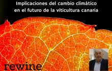 El cambio climático y el futuro de la viticultura canaria