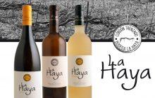La Haya, 2001 una odisea del viñedo