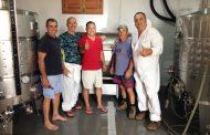 La primera uva blanca de la historia de Fuerteventura, bajo la DOP Islas Canarias