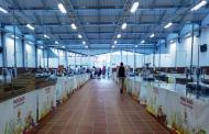 El El primer Mercado del Agricultor de Arona abre sus puertas este sábado 14 en Valle San Lorenzo