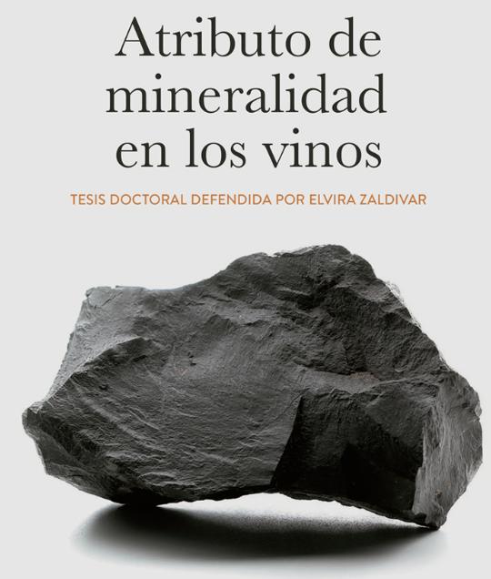 La mineralidad en los vinos