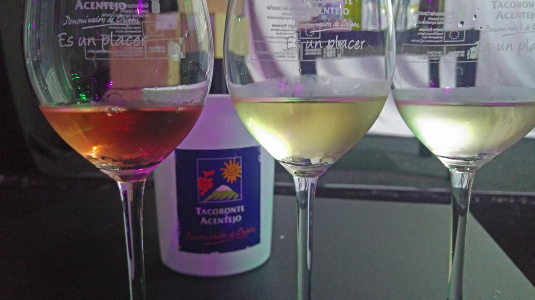 Experiencia vitivinícola Tacoronte-Acentejo