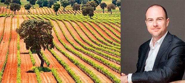 El futuro del vino en España está en transmitir más y mejor la diversidad del país
