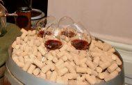 Programa de Apoyo al sector vitivinícola español