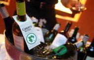 Canary Wine bate récord