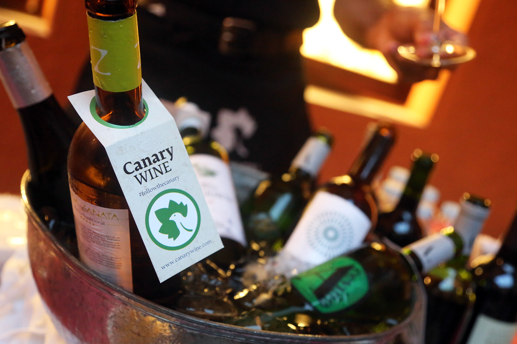Canary Wine bate récord