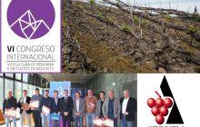 VI Congreso Internacional sobre Viticultura de Montaña