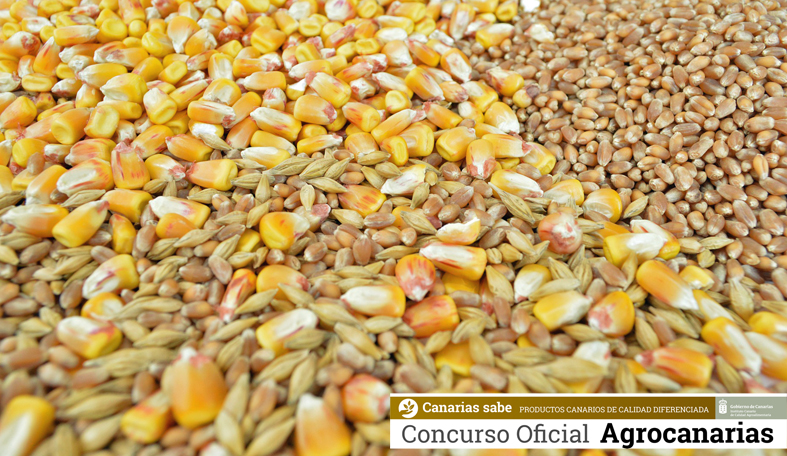 Concurso Agrocanarias de Gofio