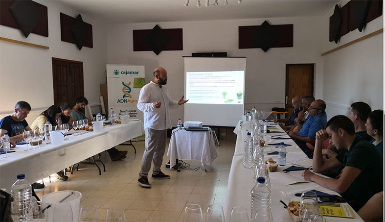 Los profesionales de La Palma se reciclan en análisis sensorial de vinos con la Universidad de La Laguna