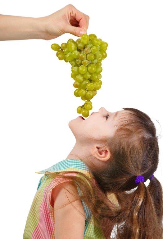 """Menores y vino: """"Posición de las denominaciones de origen ante la posible ley para prevenir y evitar el consumo de alcohol en menores"""""""
