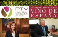 Innovación en el sector del vino