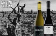 Novedades en vinos artesanales de la Vinoteca El Gusto por El Vino
