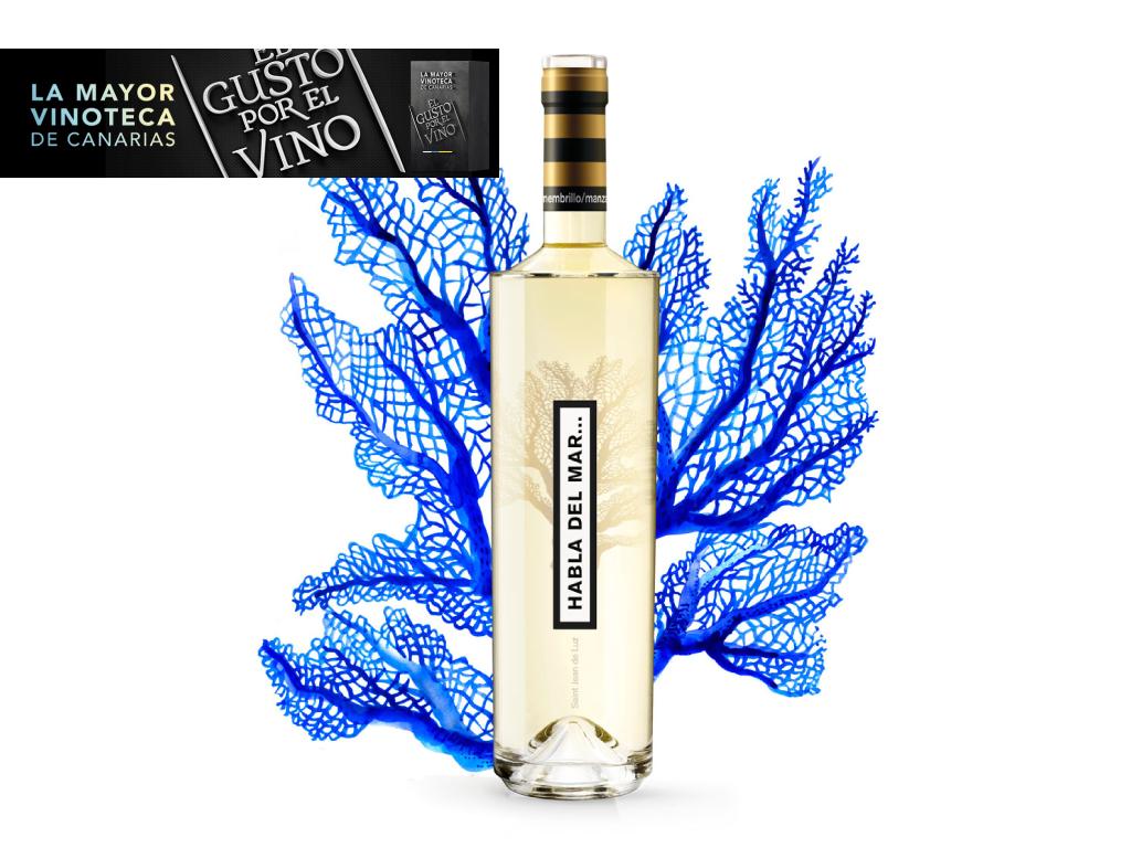 Nuevo -vino submarino- en la Vinoteca el Gusto por el Vino