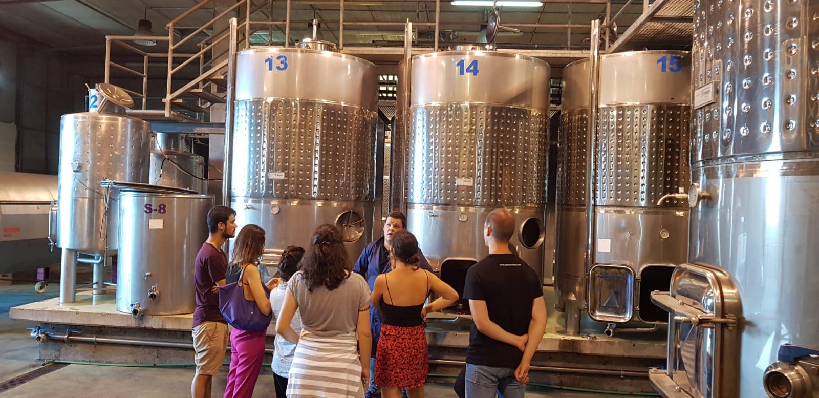 Alumnos de la Universidad Politécnica de Madrid visitan bodegas y viñedos de Tenerife