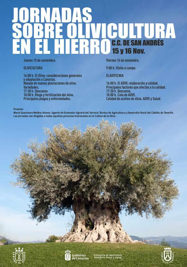 El Gobierno de Canarias y el Cabildo de El Hierro organizan unas jornadas sobre Olivicultura en la isla