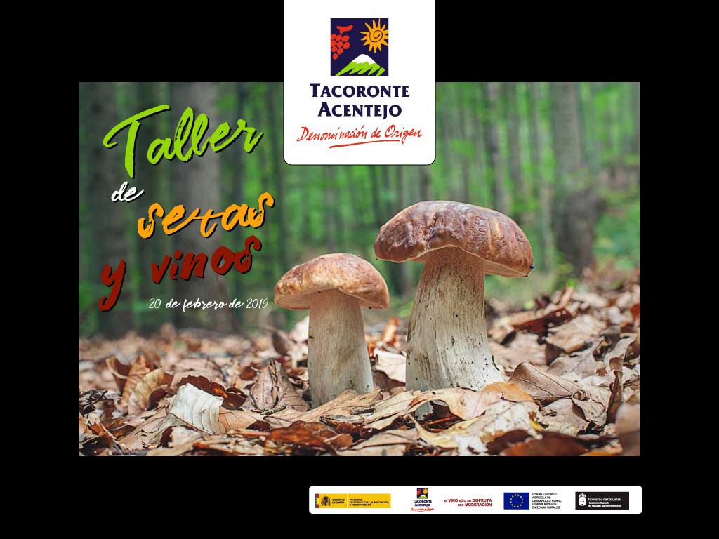 TALLER DE SETAS Y VINOS EN TACORONTE-ACENTEJO