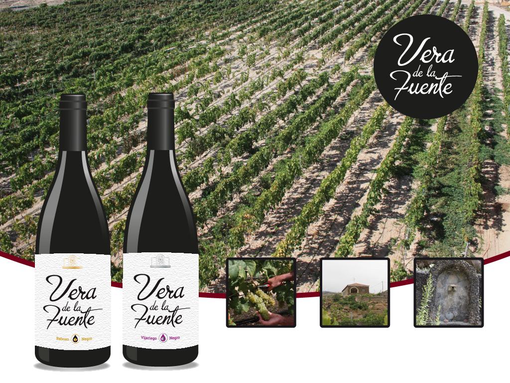 Cata comentada Tintos del Sur, con los vinos Vera de la Fuente