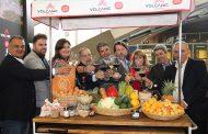 El Gobierno de Canarias promociona los productos locales en GastroCanarias 2019
