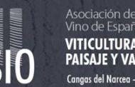 Tecnología e Innovación en la Viticultura Heroica en el XVII Simposium de la Asociación de Museos del Vino de España