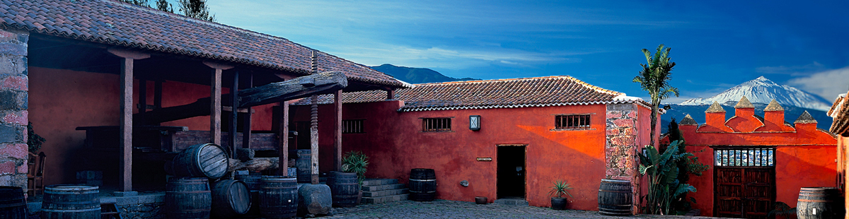 DEGUSTACIÓN DE VINOS DE TENERIFE DEL 16 AL 29 DE FEBRERO DE 2016. Casa del Vino Tenerife