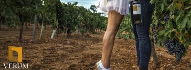 """Convocada la II edición del certamen fotográfico nacional """"Bodegas Verum, vino y vendimia""""  ( www.vinoticias.es )"""