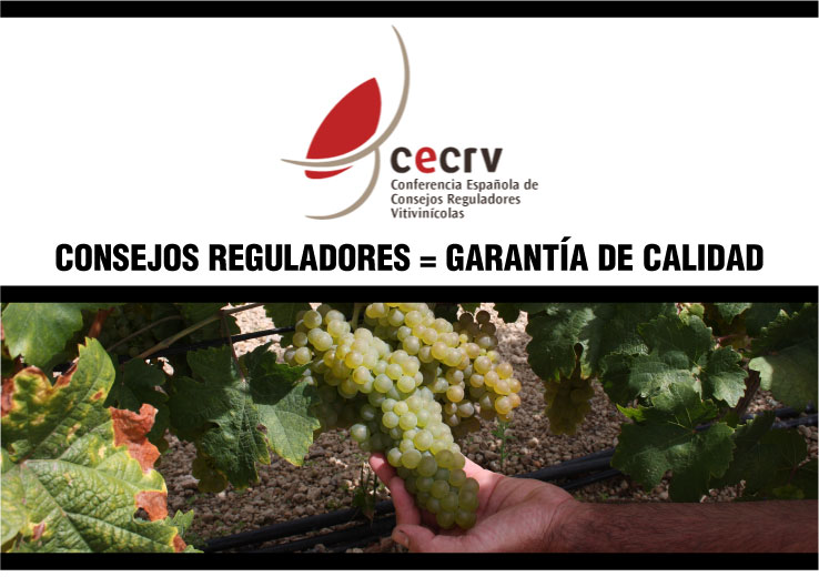 Las Denominaciones de Origen lanzarán en 2016 una campaña de promoción que difundirá los valores del vino con D.O.