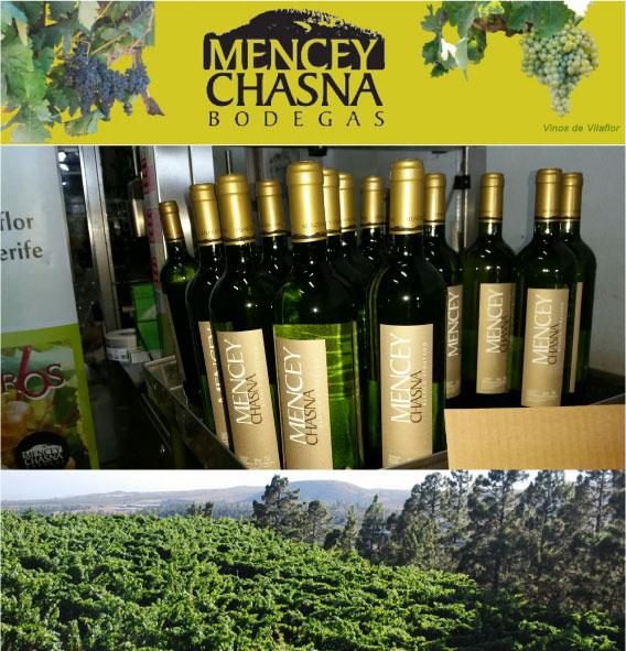 Bodegas Mencey Chasna lanza un blanco afrutado cosecha 2015