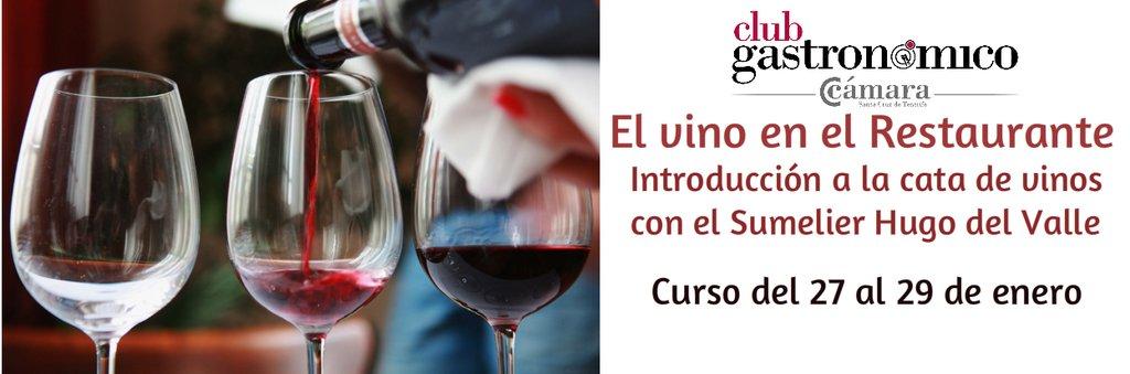 Curso de iniciación a la cata de vinos, por Hugo Pérez del Valle