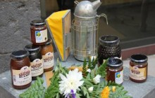 540.000 € en ayudas a los productores de miel de Abeja Negra Canaria