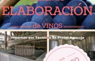 Curso de Elaboración de Vinos en las instalaciones de Prodel Agrícola, Tacoronte. Tenerife