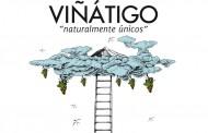 Viñátigo, única bodega canaria participante en EXVIGAS 2016