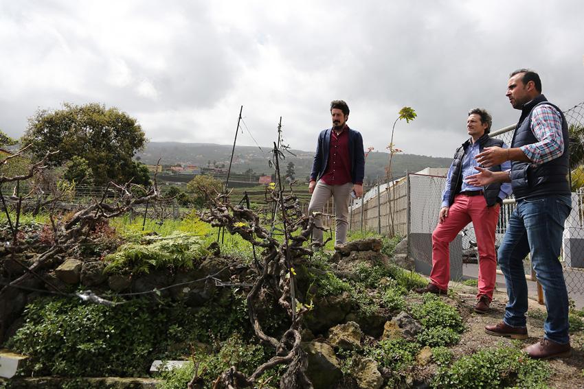 La DOP Islas Canarias visita a los bodegueros para conocer su trabajo
