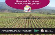 MIRANDO AL SUR, ABONA. PROGRAMA DE ACTIVIDADES