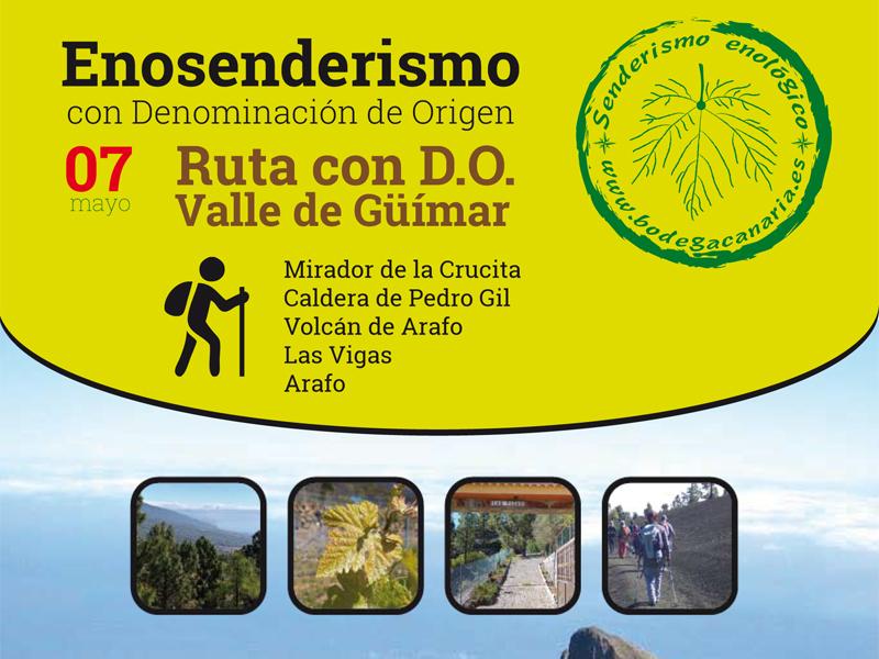 Enosenderismo con D.O. Valle de Güímar. Abiertas las inscripciones